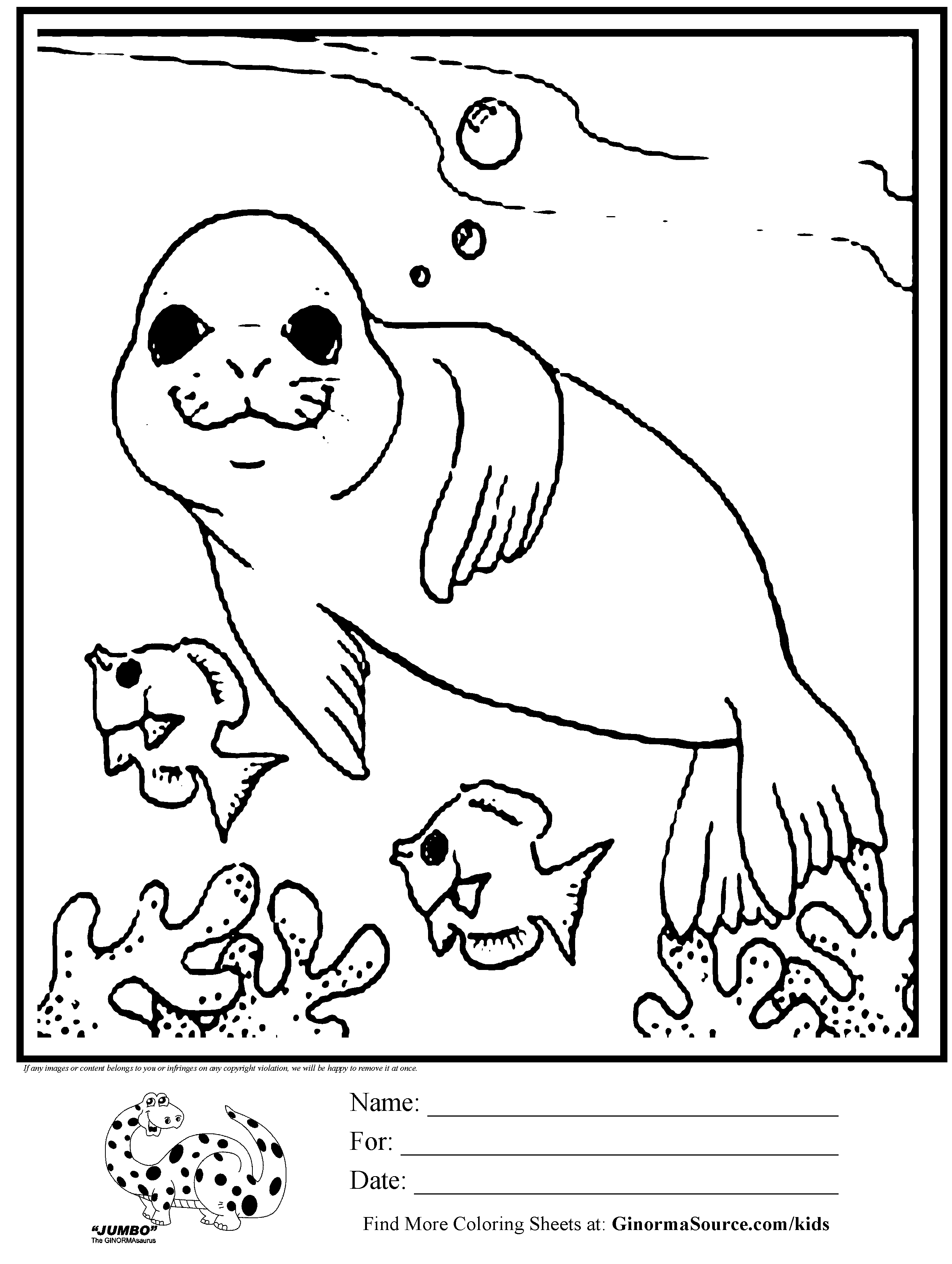 Baby Seal Coloring Pages - Coloring Home