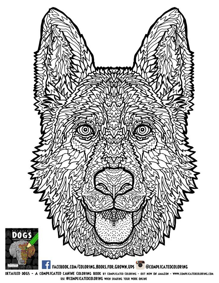 Coloring | Free Adult Coloring Pages, Adult Coloring ...