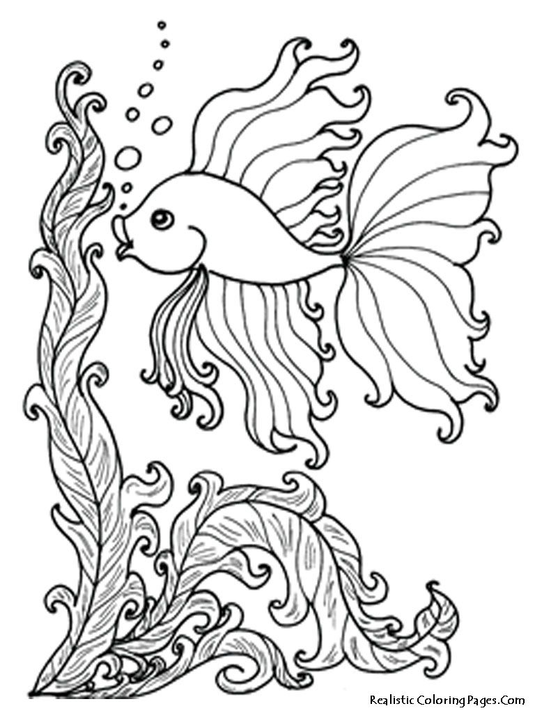 Free coloring pages realistic animals - Coloring Book Under Water Ocean Fish Coloring Pages Realistic Coloring Pages Free Printable Underwater Coloring