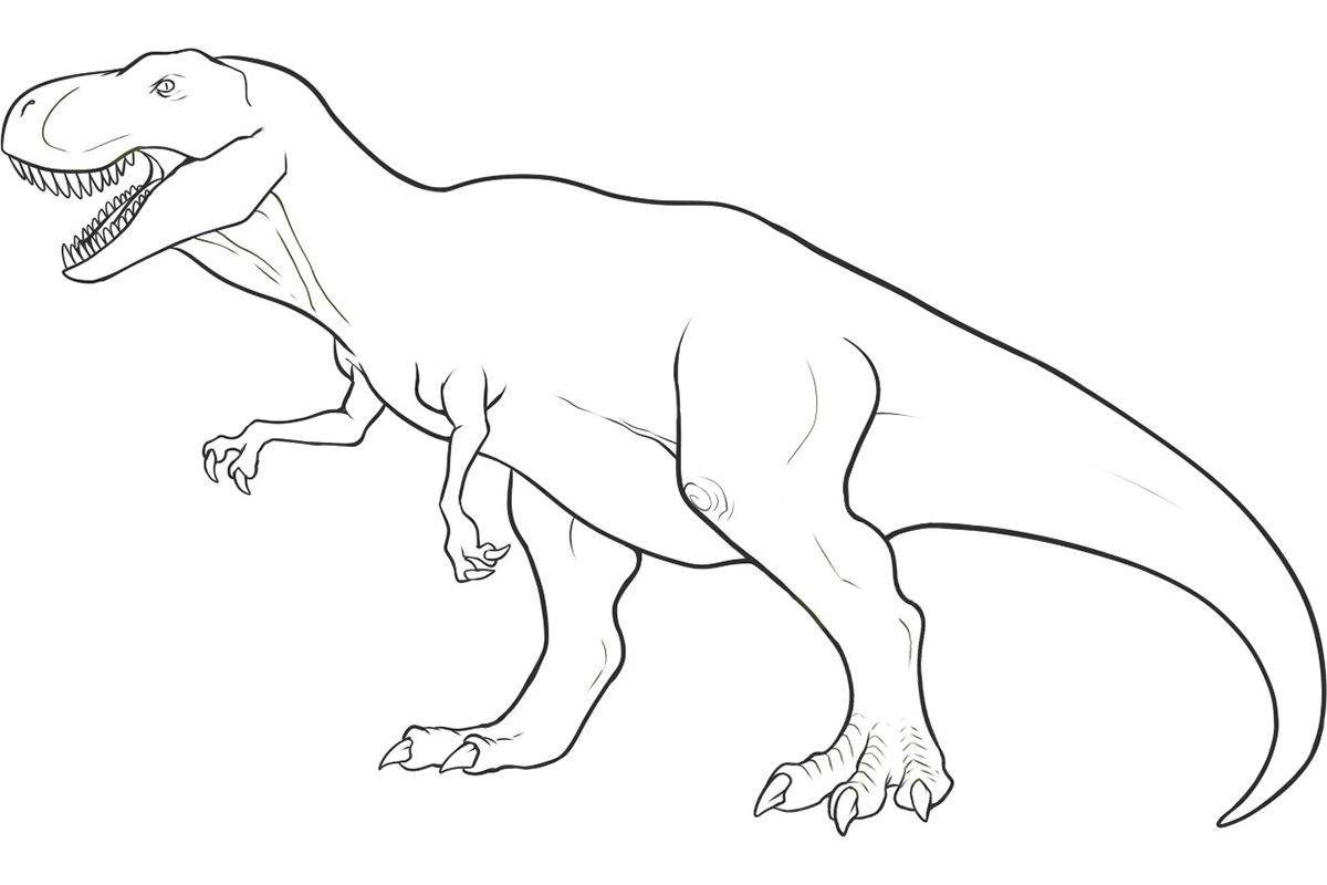 Dinosaurs coloring games - 7 Pics Of Simple Dinosaur Coloring Pages Simple Dinosaur Drawing