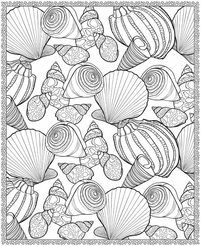 Seashells Coloring Page For Adults