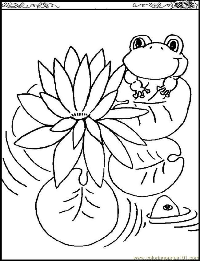 lily pad coloring page coloring home
