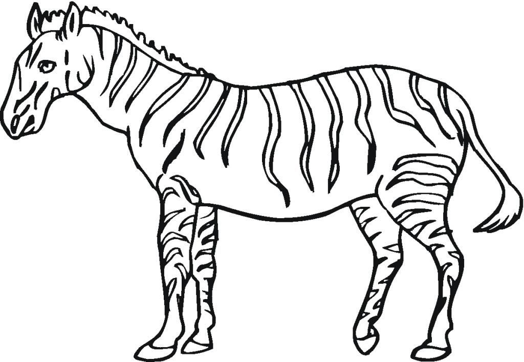 Zebra Coloring Pages For Kids Printable - Printable Zebra Coloring