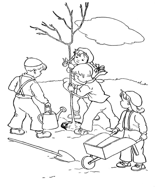 Bare Tree Coloring Page Coloring Pages Pictures Imagixs