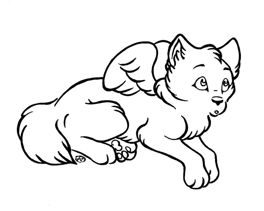 Wolf With Wings Coloring Pages Dragoart