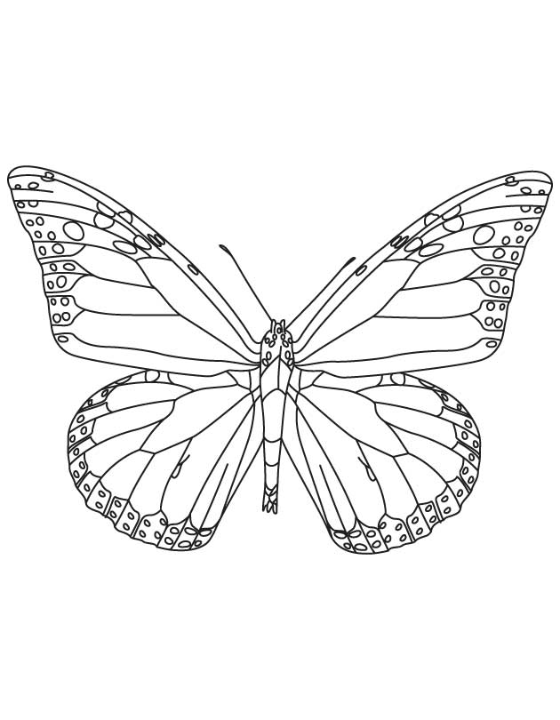 Monarch butterfly coloring pages for Monarch butterfly coloring page