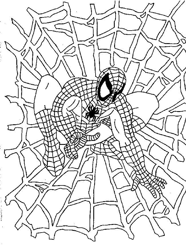 spider coloring pages online - photo#33