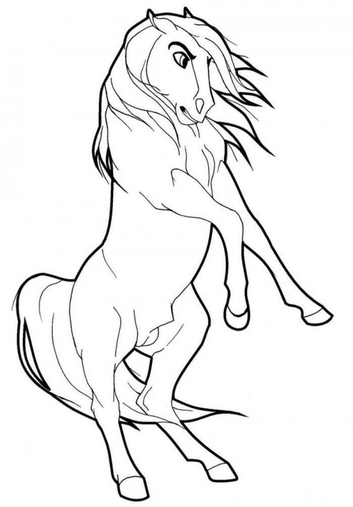 coloring pages wild horses - photo#32