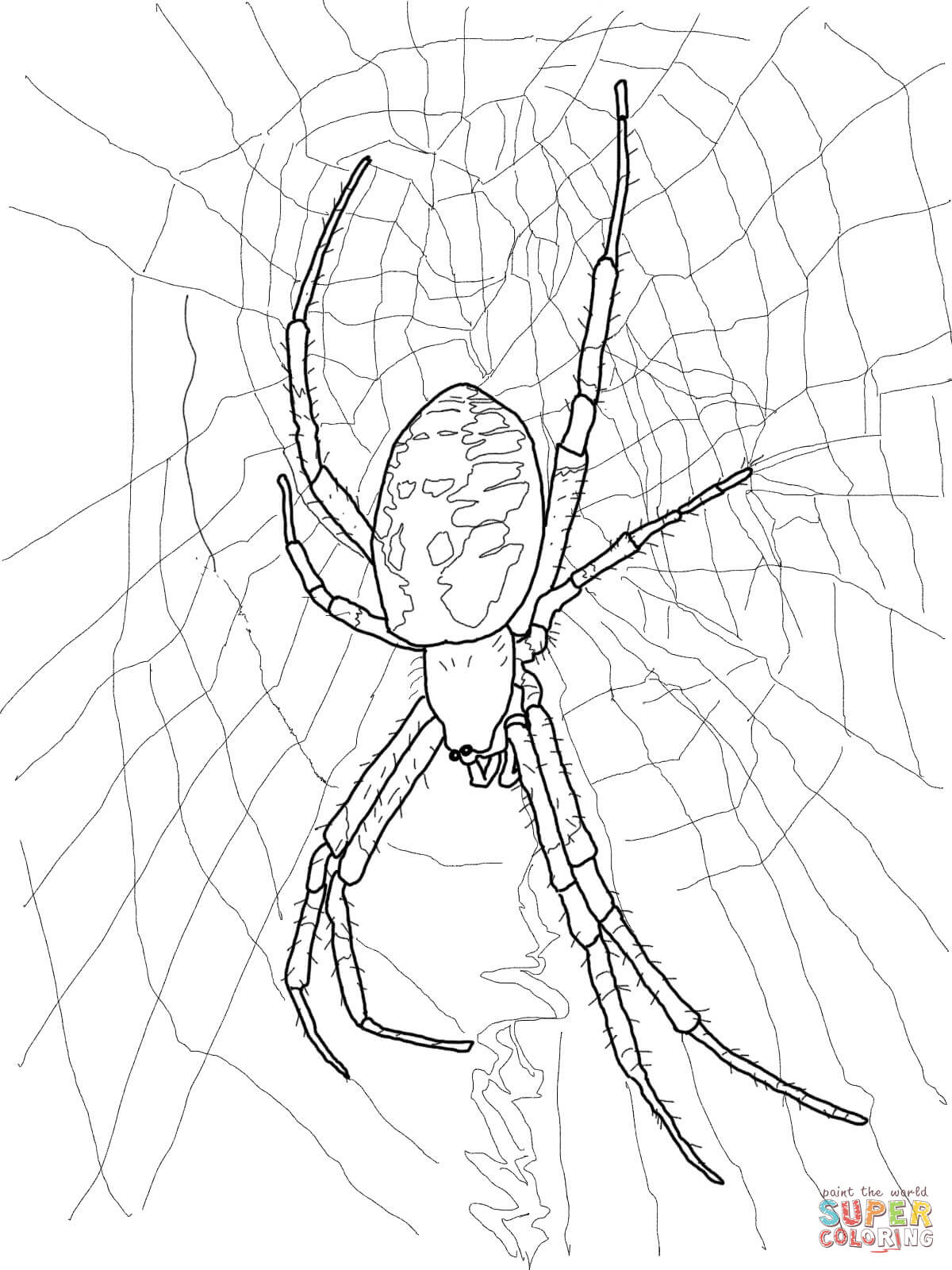 creepy spiders coloring pages - photo#4