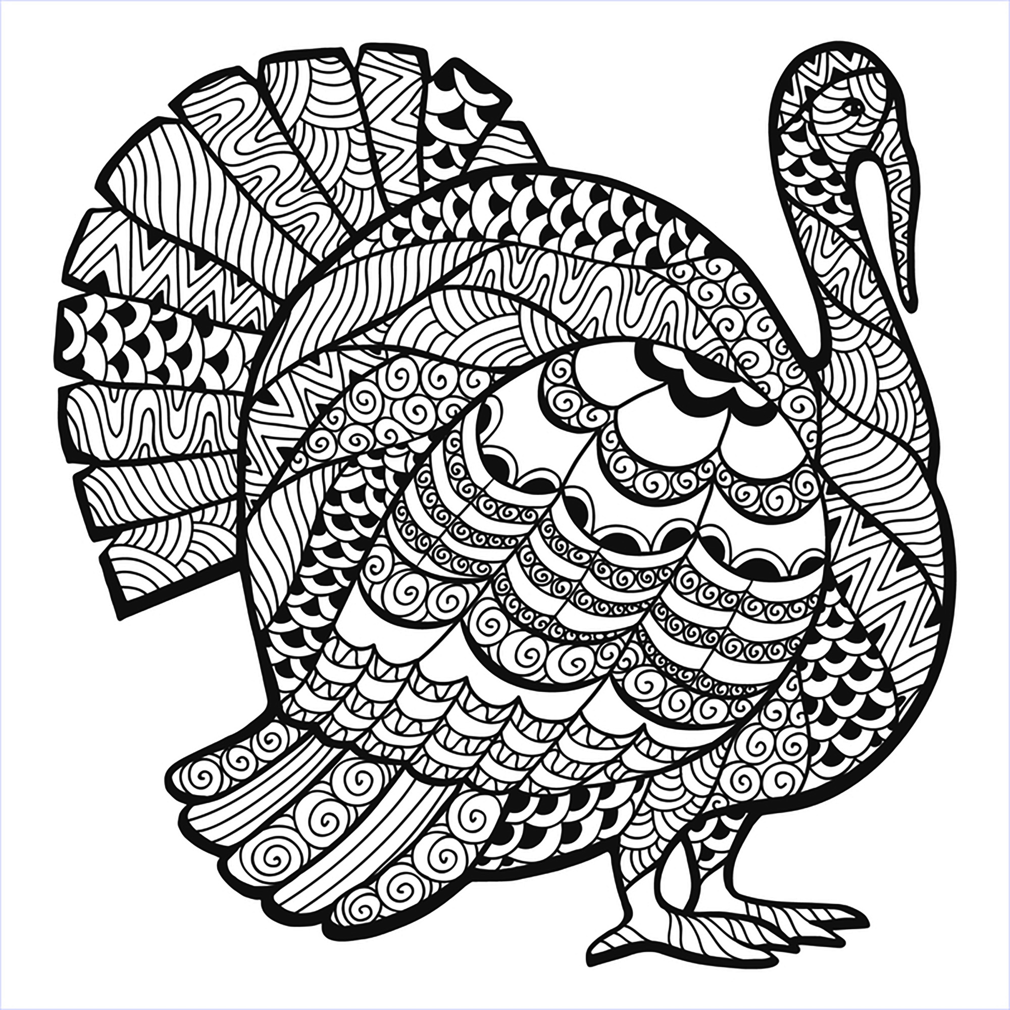 Thanksgiving coloring pages for adults coloring home for Turkey coloring pages to print
