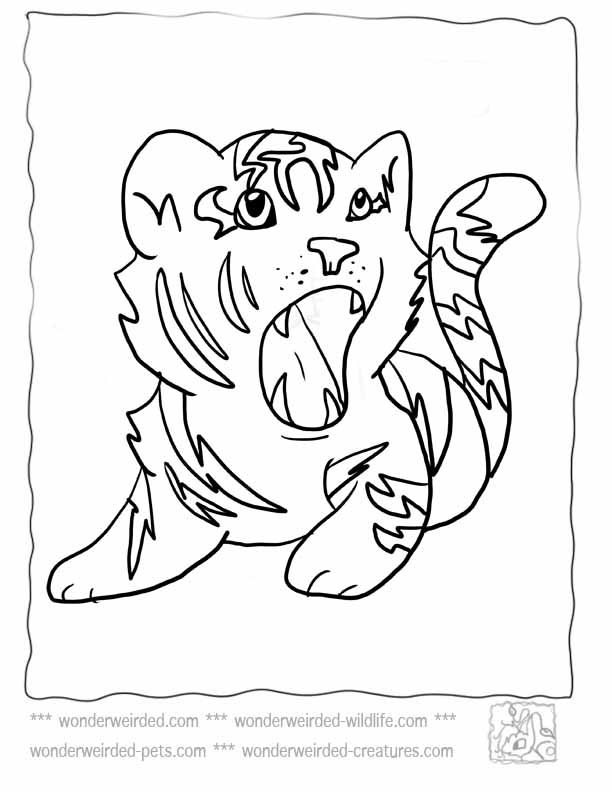 Baby tiger coloring pages coloring home for Tiger coloring pages for kids