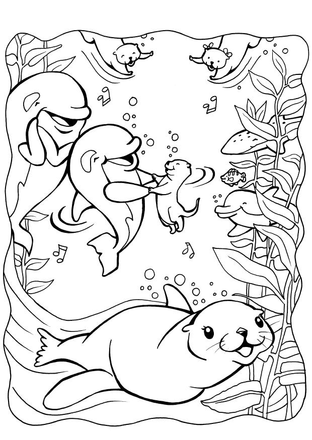 Printable Coloring Websites : Seal coloring free page site az pages