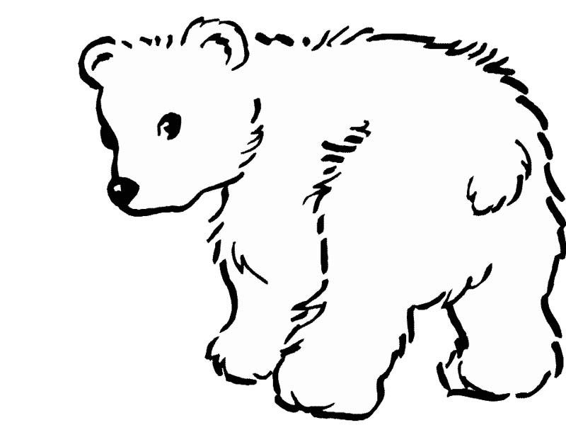 Baby Polar Bear Coloring Pages Az Coloring Pages Polar Bears Coloring Pages
