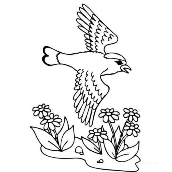 Spring Coloring Pages For Preschoolers - Spring Coloring Pages of