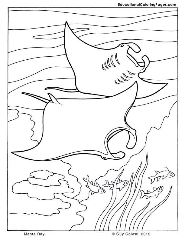 Ocean Coloring Book Pages
