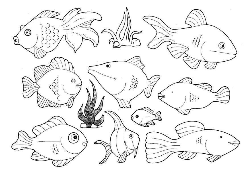 free small fish coloring pages | Printable Fish Cutouts - Coloring Home