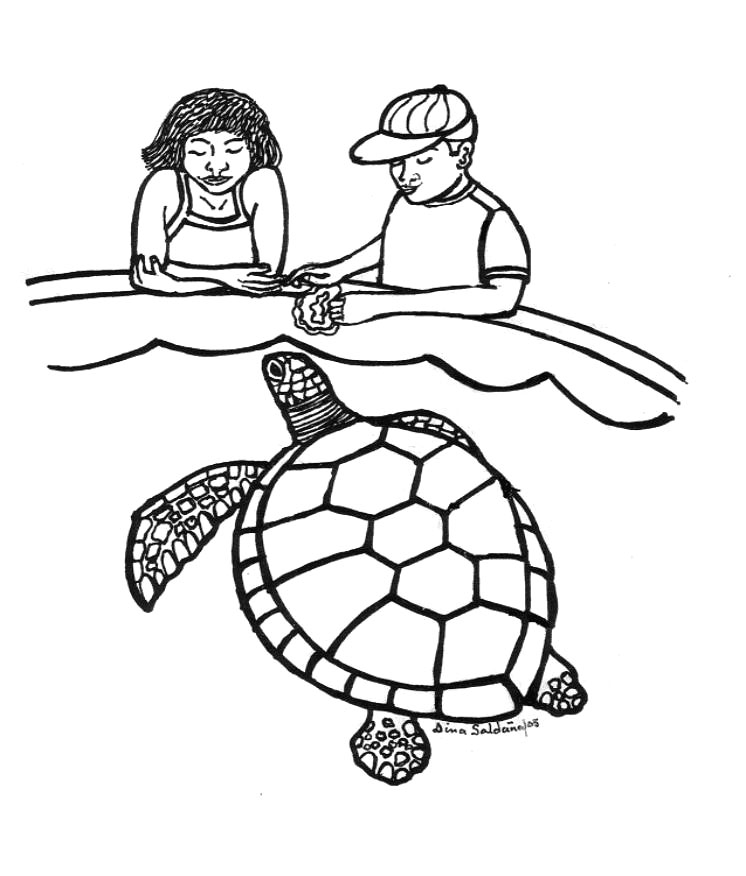 turtle cartoon coloring pages - photo#30