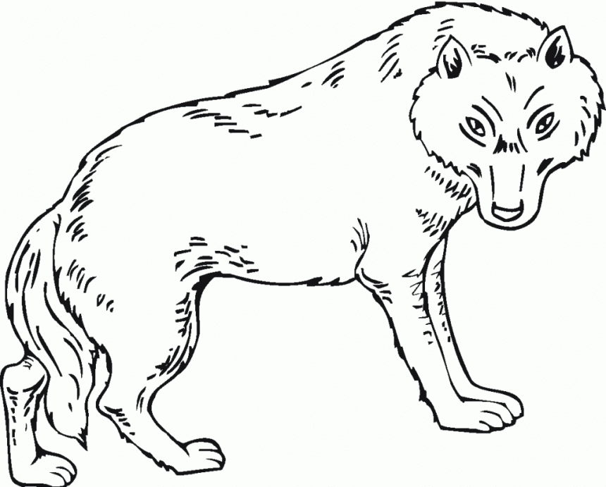 Peter And The Wolf Coloring Pages Az Coloring Pages And The Wolf Coloring Page3s