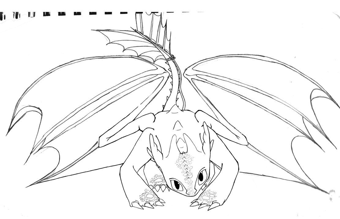 Coloring pages how to train your dragon - 7 Pics Of Train Your Dragon Coloring Pages How To Train Your