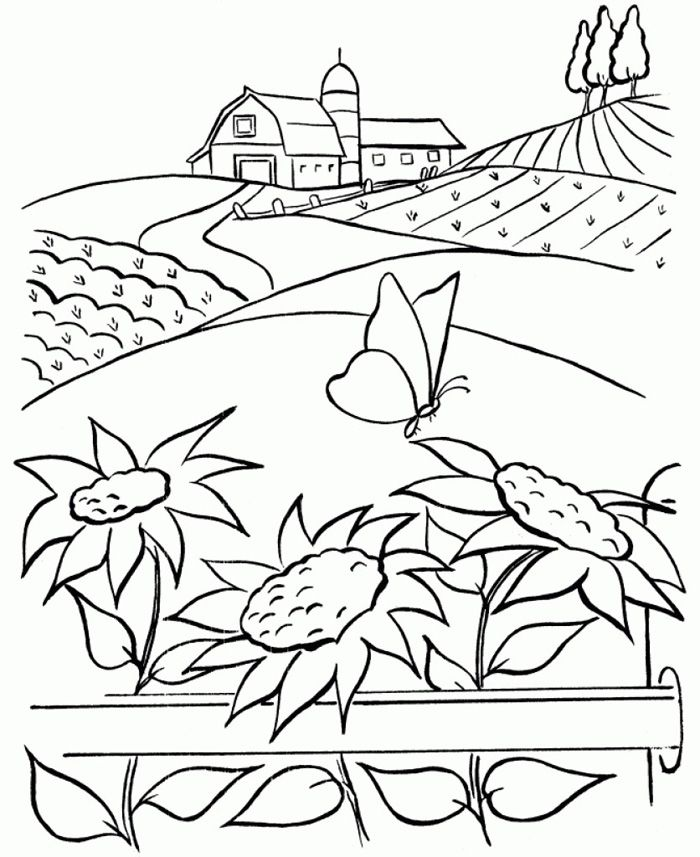 Nature Around The House Coloring Pages - Coloring Home