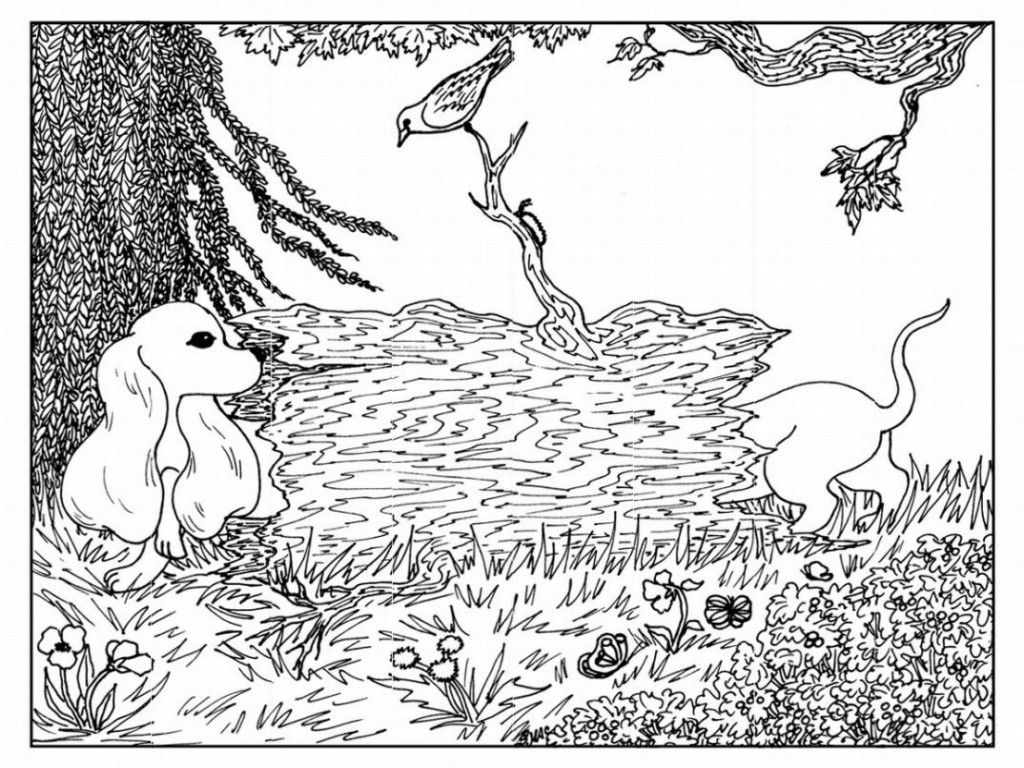 Advanced Coloring Pages Of Animals : Advanced coloring pages of animals home