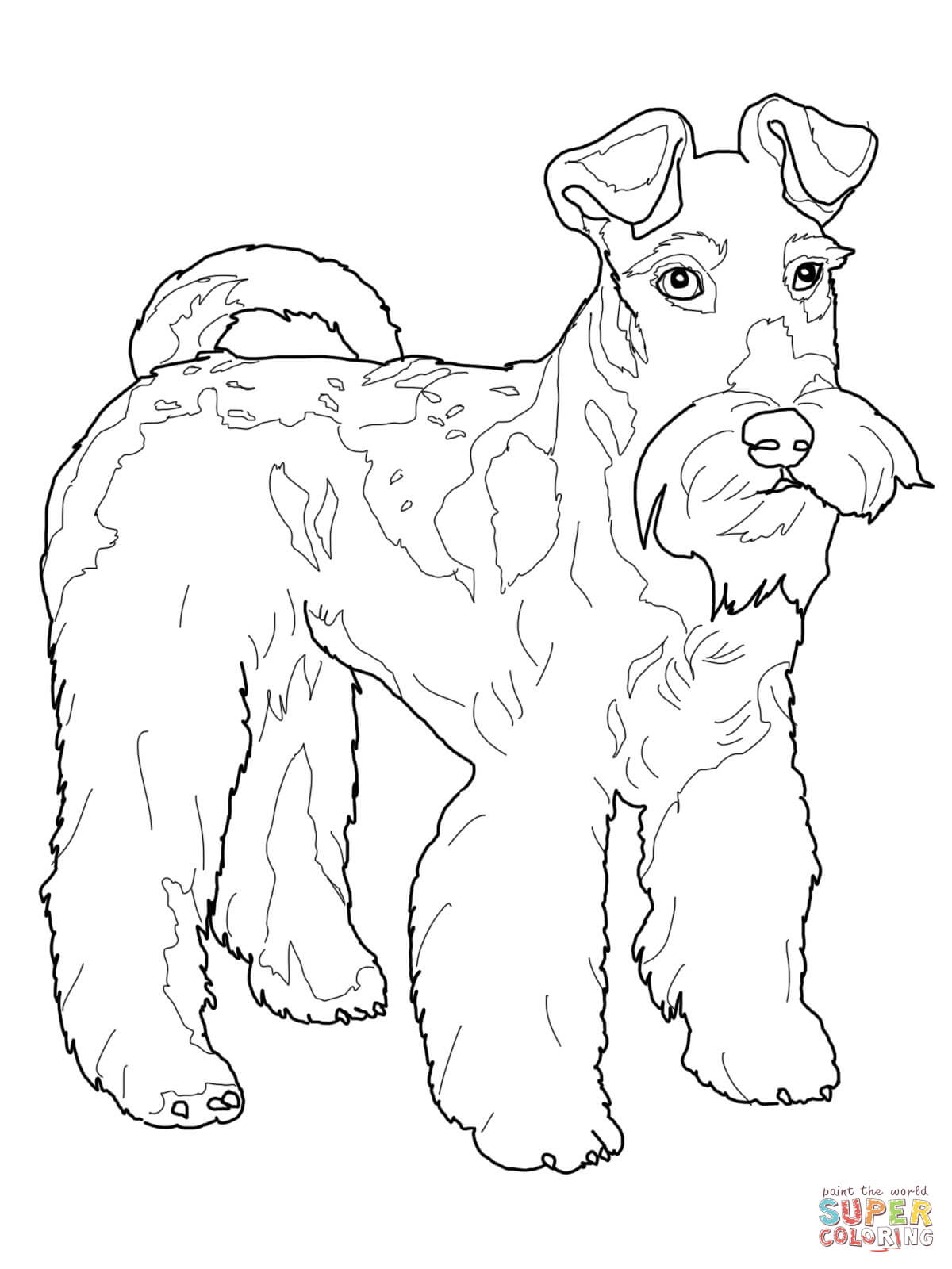 Wire Fox Terrier coloring page | Free Printable Coloring Pages