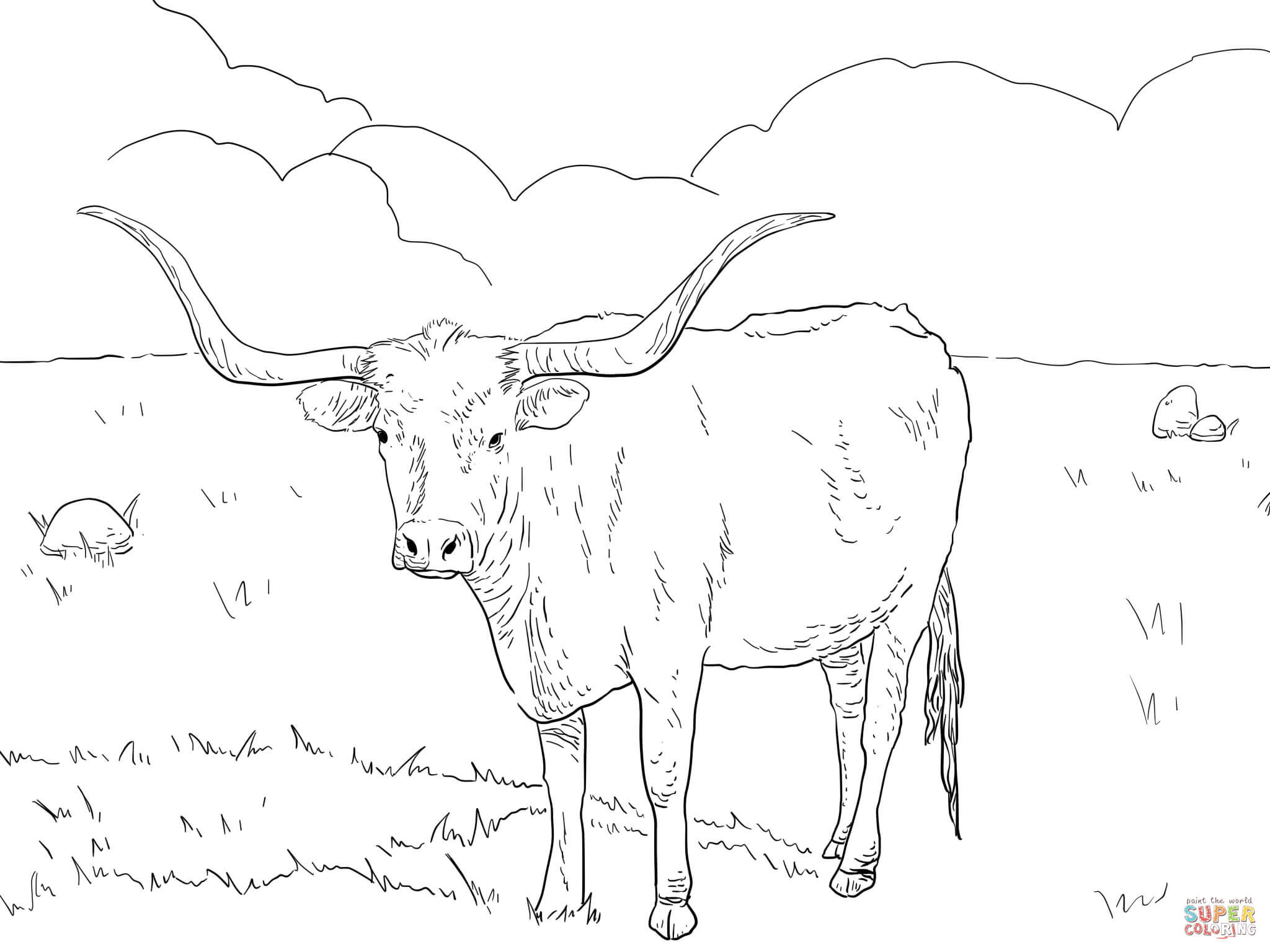 Cheap Texas Longhorn Cow Coloring Page With Mockingbird