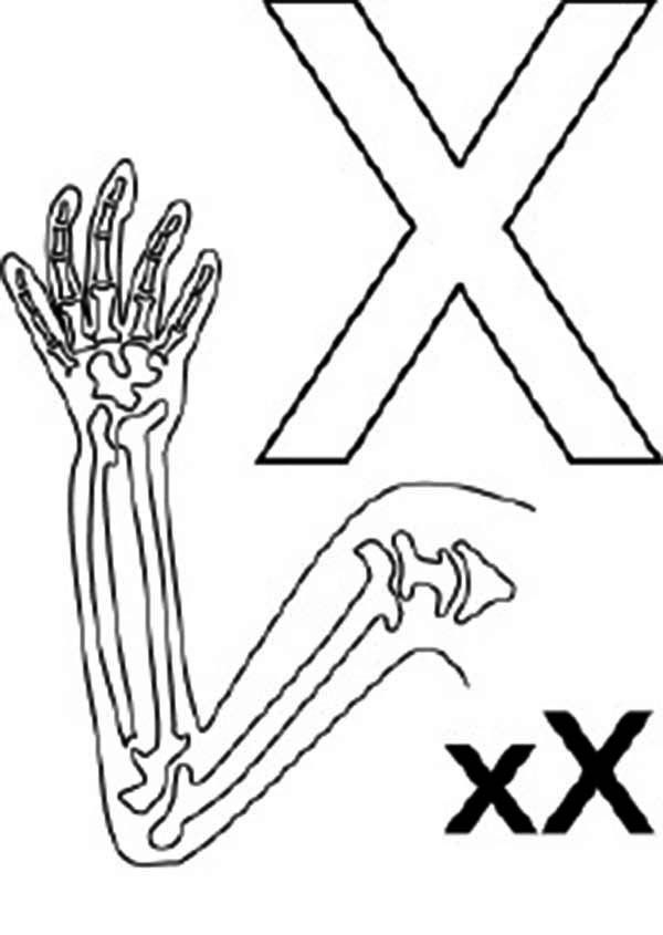 big and small letter x for x ray coloring page bulk color