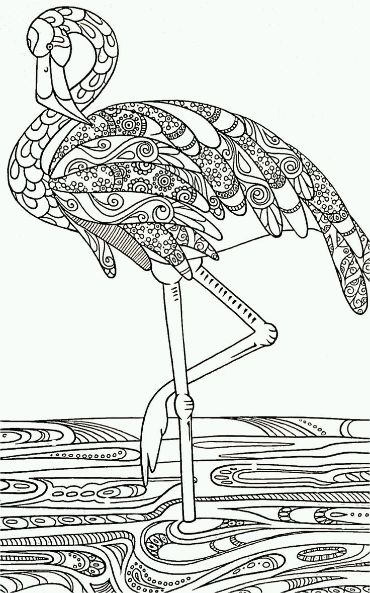 flamingo coloring pages printable free - photo#33