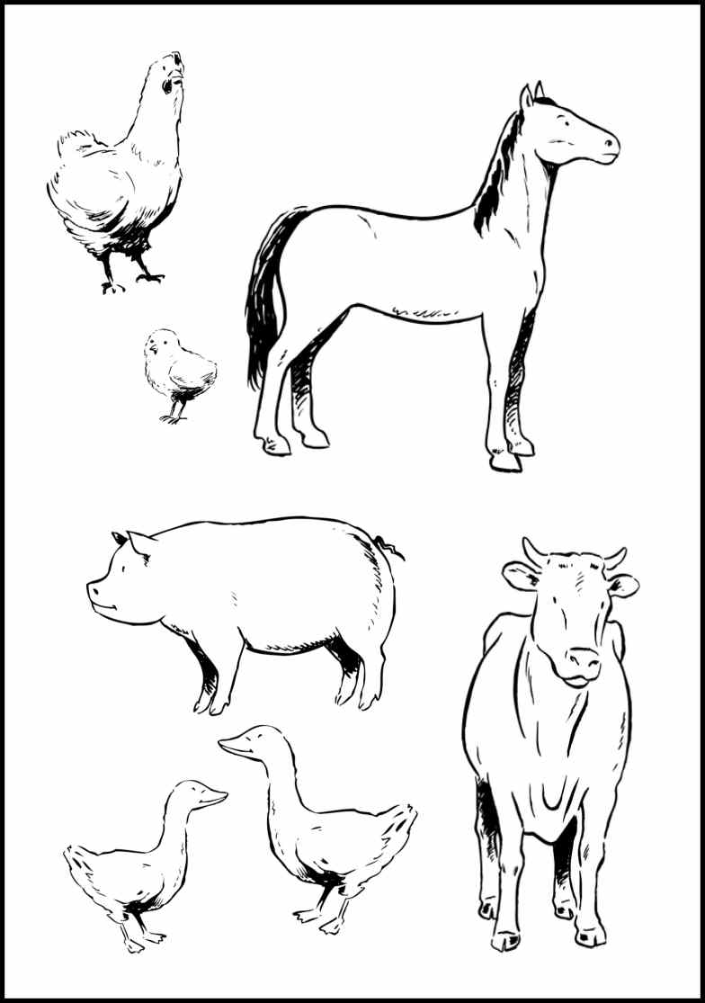 Coloring Pages Free Farm Animal Coloring Pages free barn animal coloring pages az farm animals to print 27378 lookanimals com