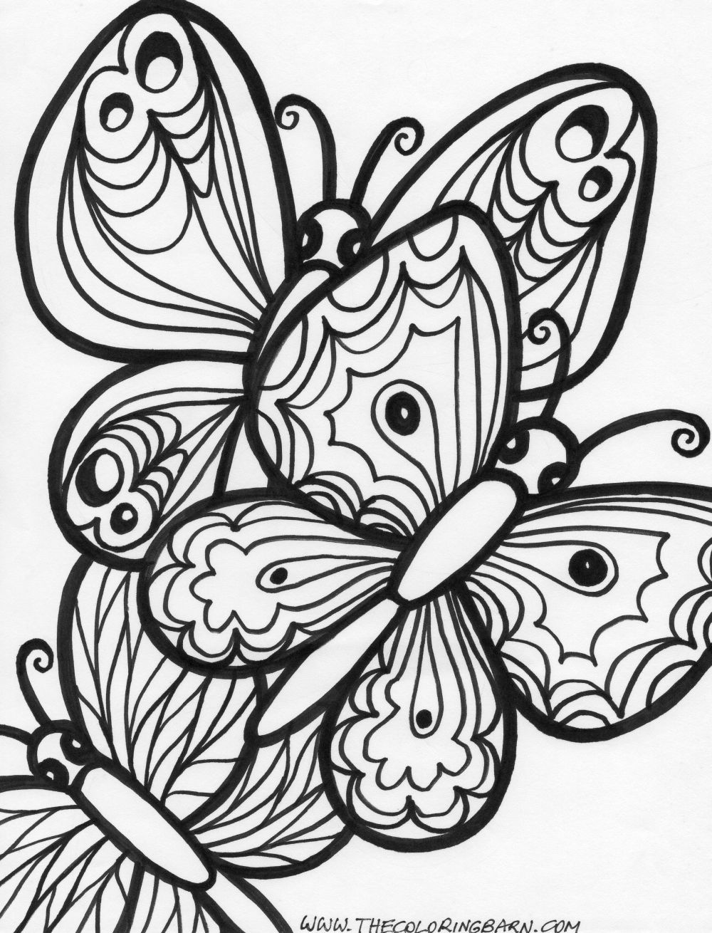 Cute Butterfly Coloring Pages For Adults