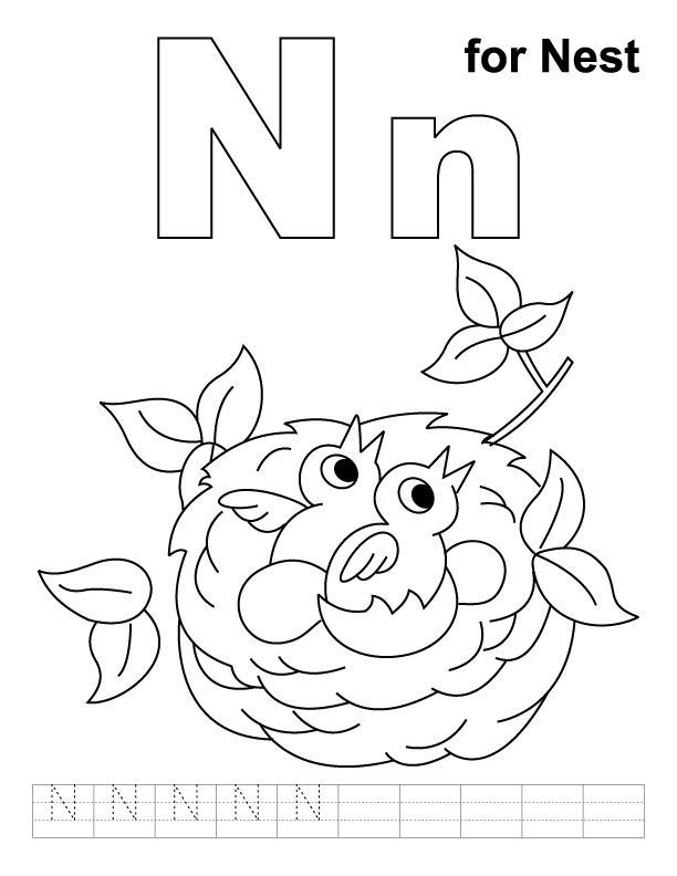 N for nest coloring page with handwriting practice | Summer ...