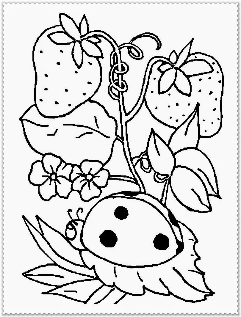 Springtime Pictures Coloring Pages For Adults To Print ...