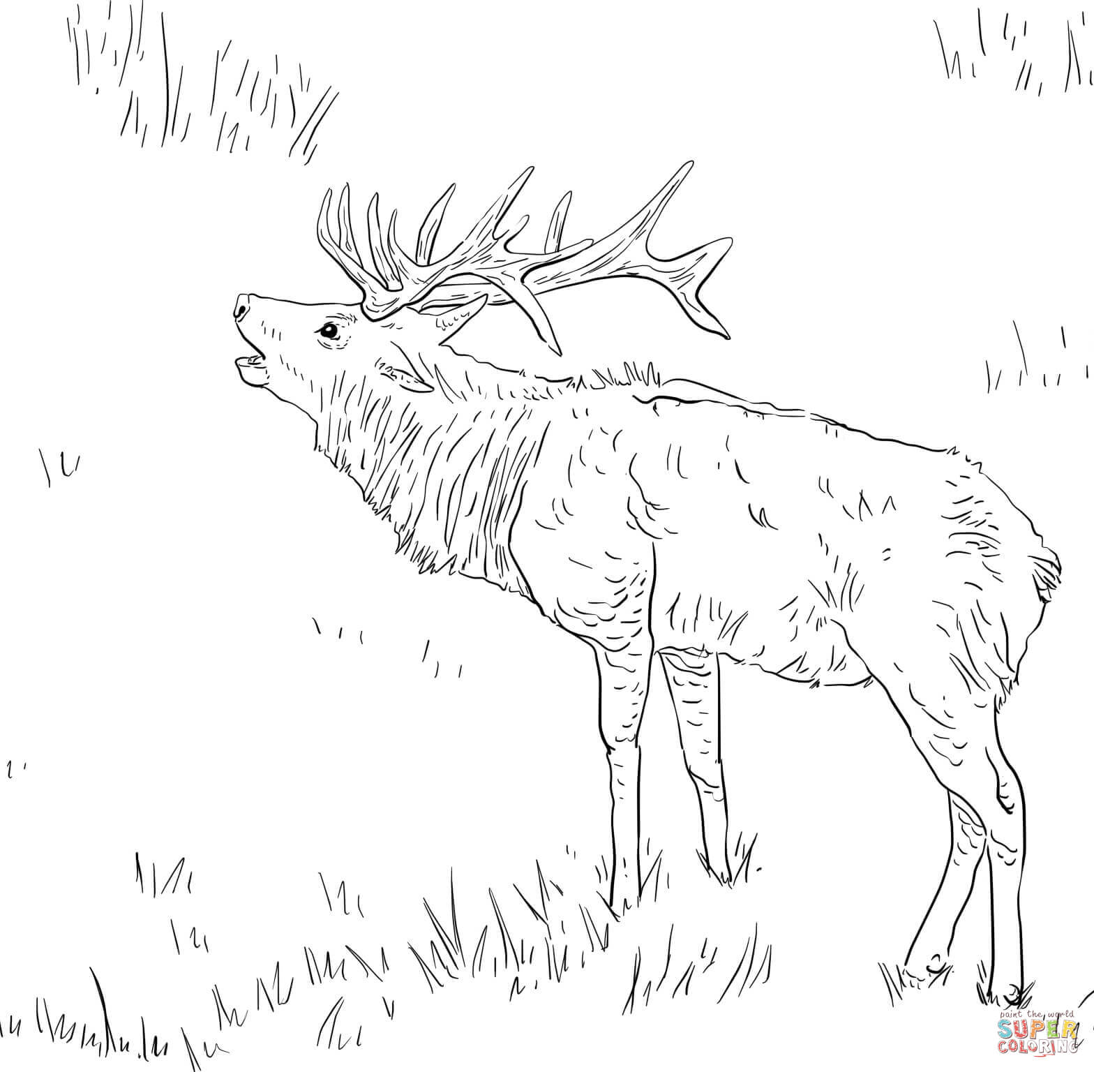 Free coloring page deer - Elk Coloring Pages Free Coloring Pages