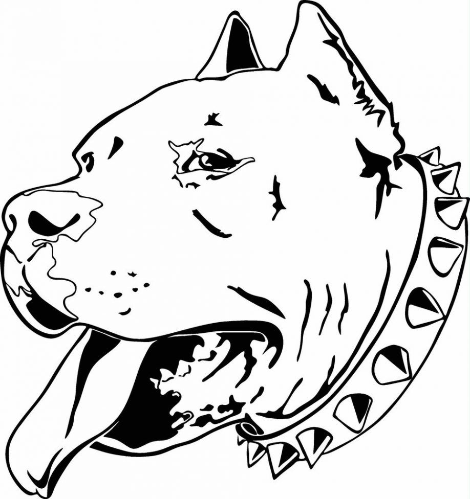 Pitbull Dog Coloring Pages - Coloring Home
