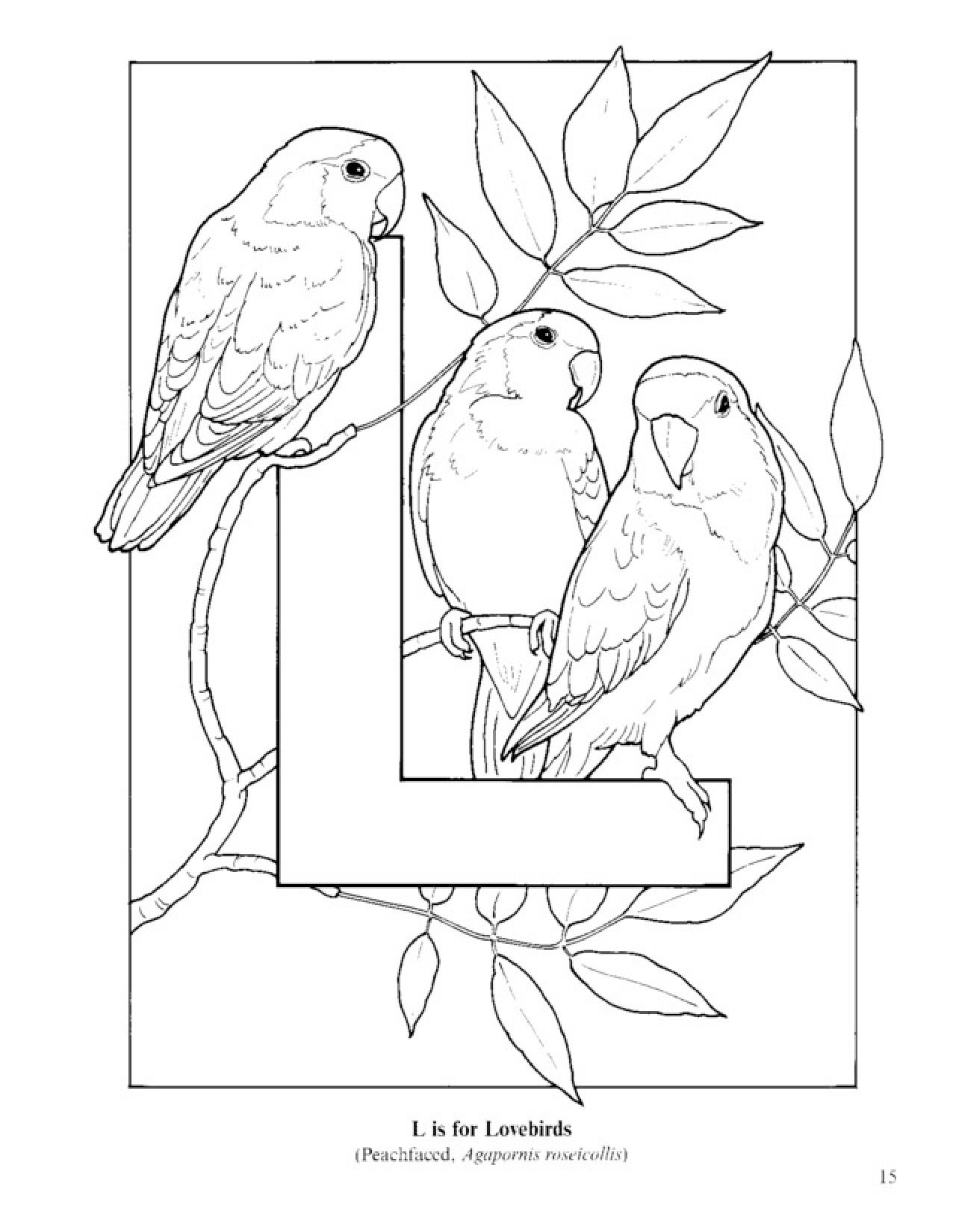 Kids Coloring Pages Images Stock Photos amp Vectors