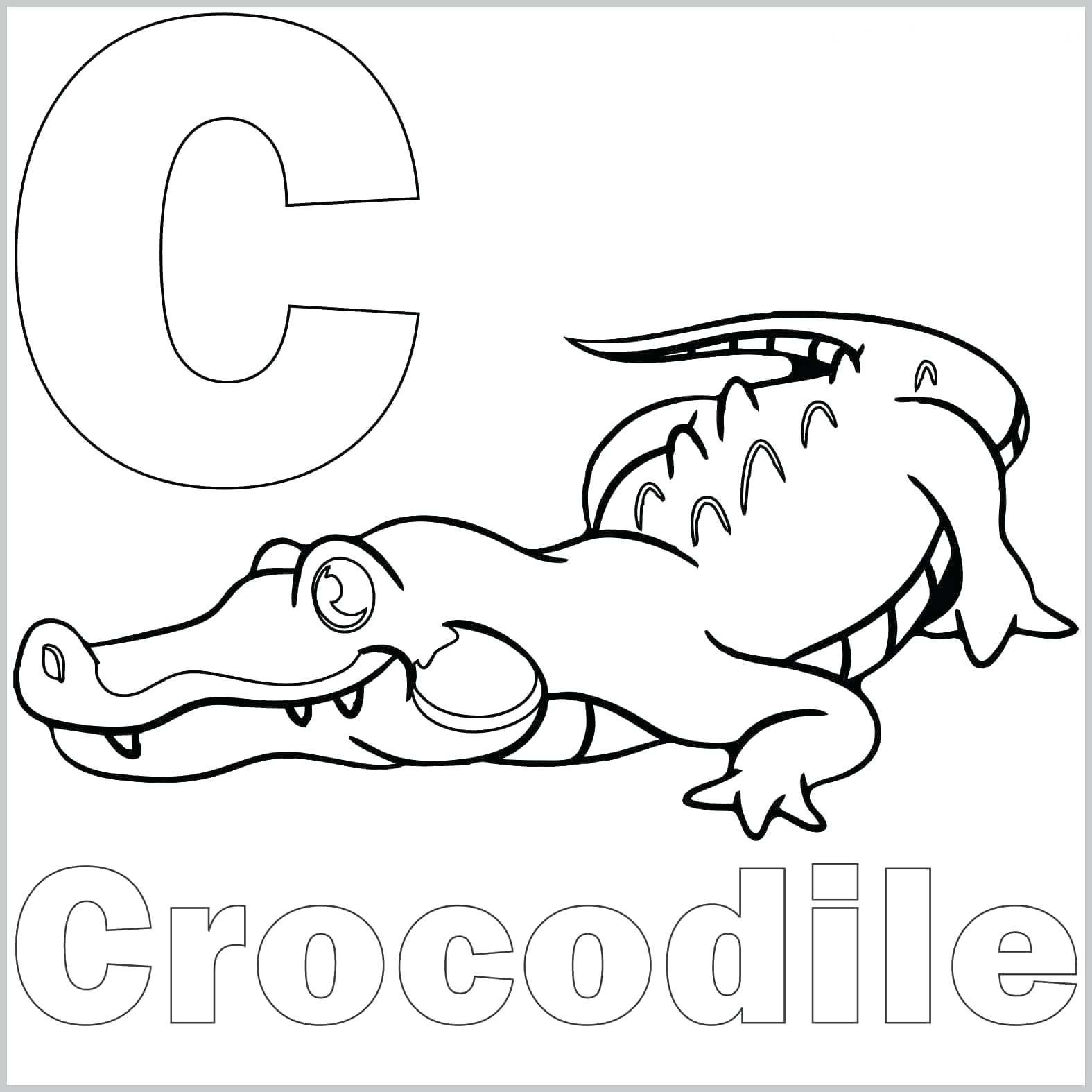 Top 30 Wicked Alligator Coloring Pages For Kids Printable Image Coloring Home