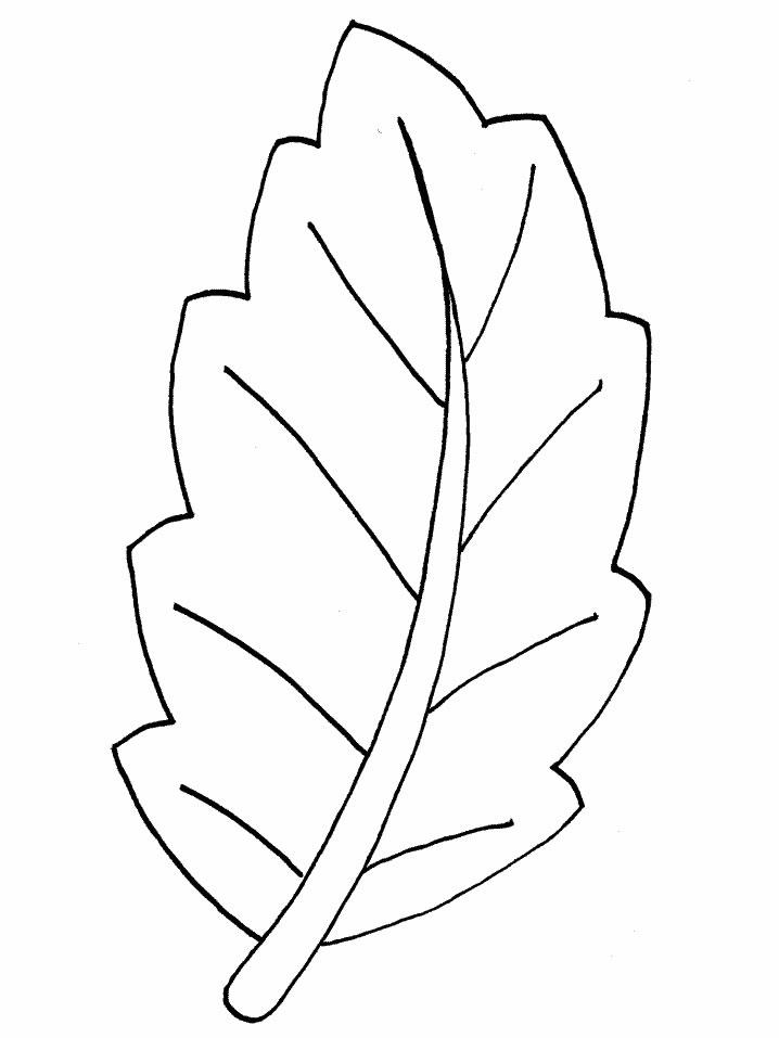 Printable Leaf Templates Az Coloring Pages