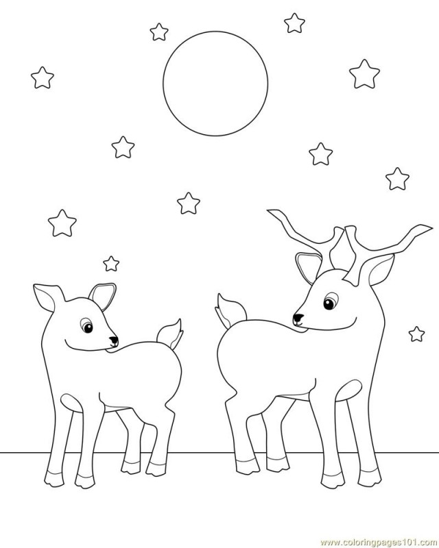 mammals coloring pages - photo#22