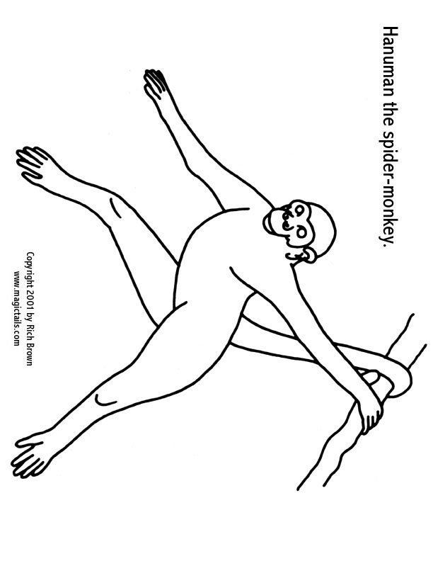Spider monkey coloring page az coloring pages for Spider monkey coloring page