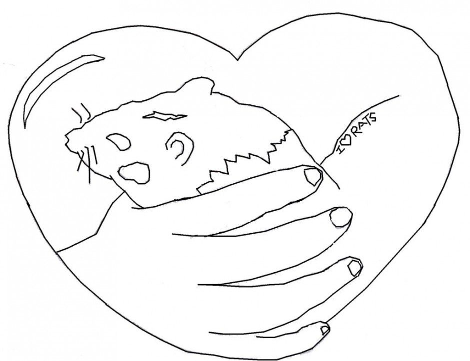 Webkinz Coloring Page  Coloring Home