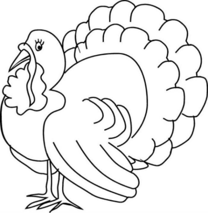 Free Coloring Pages Of Cooked Turkey