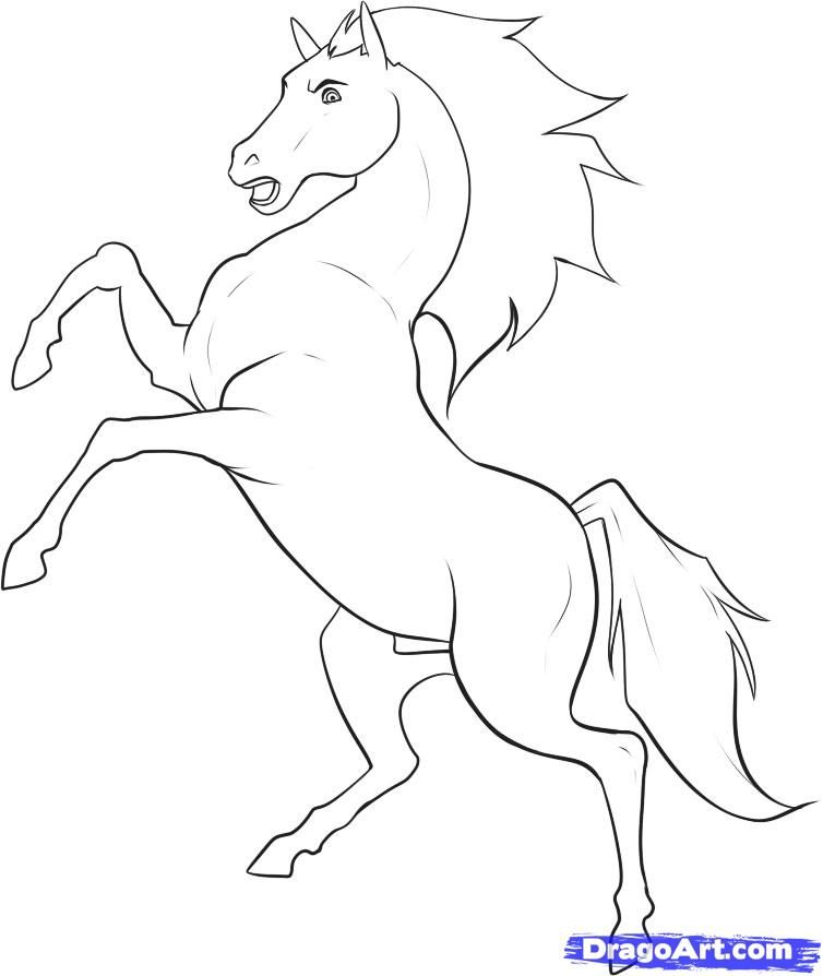 Draw a Stallion, Step by Step, Drawing Sheets, Added by Dawn