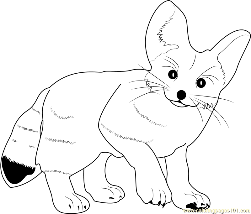 Cute Baby Fox Coloring Pages - Coloring Home