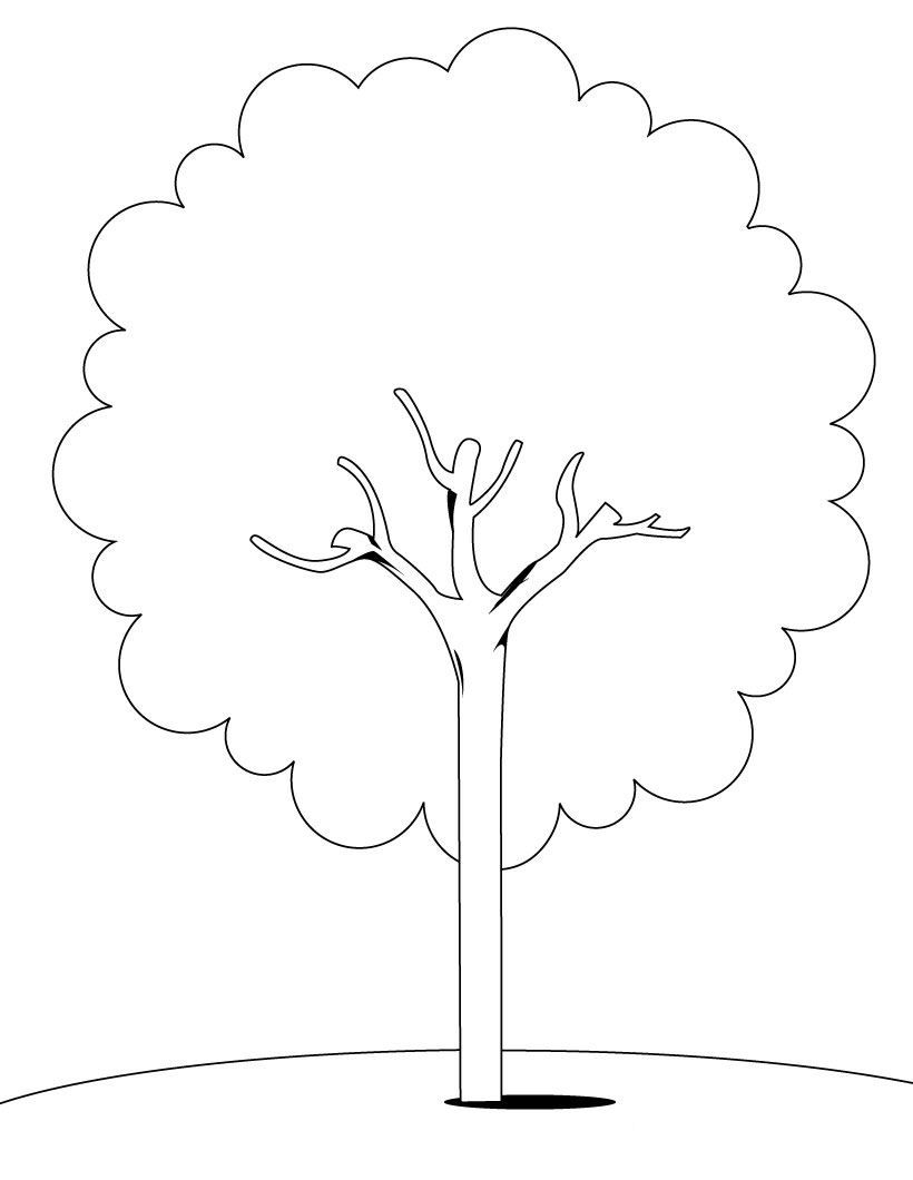 Free Animal Pages Coloring Pages Of A Tree Fresh On Free Coloring ...