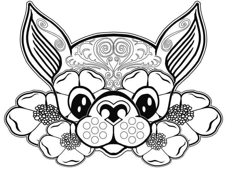 Chihuahua Coloring Pages - Coloring Home
