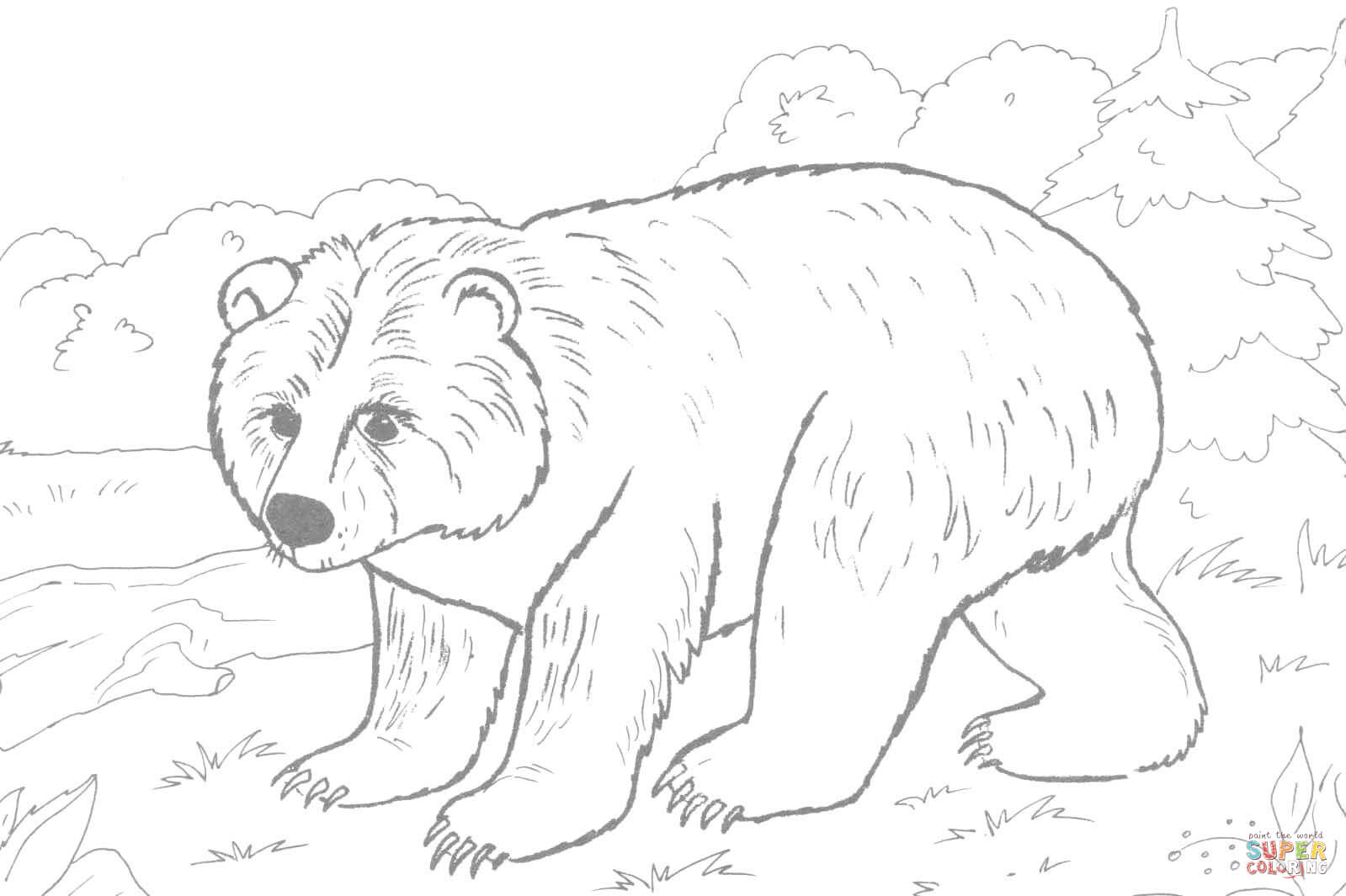 Brown Bear Coloring Page | Free Printable Coloring Pages - Coloring Home