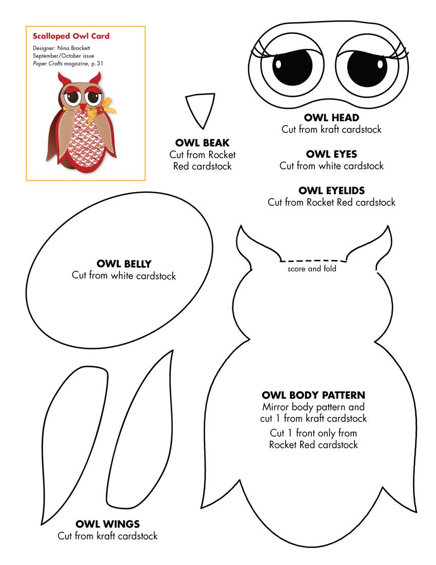 graphic relating to Printable Owl Stencil known as Printable Owl Template - Coloring Property