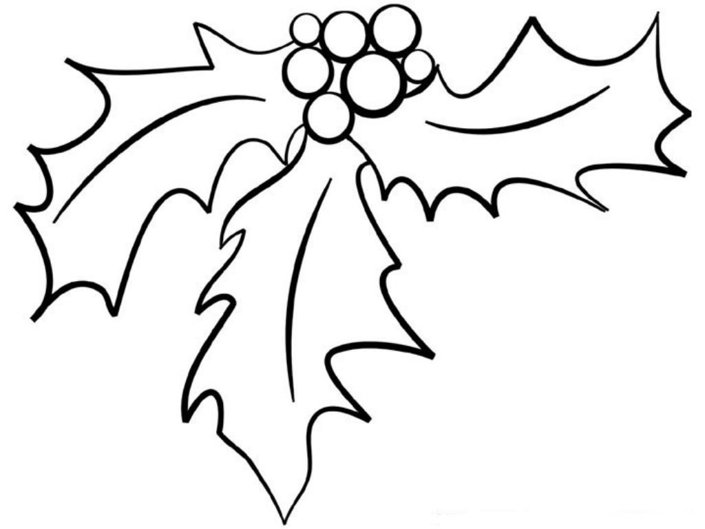 christmas holly border coloring pages - photo#29