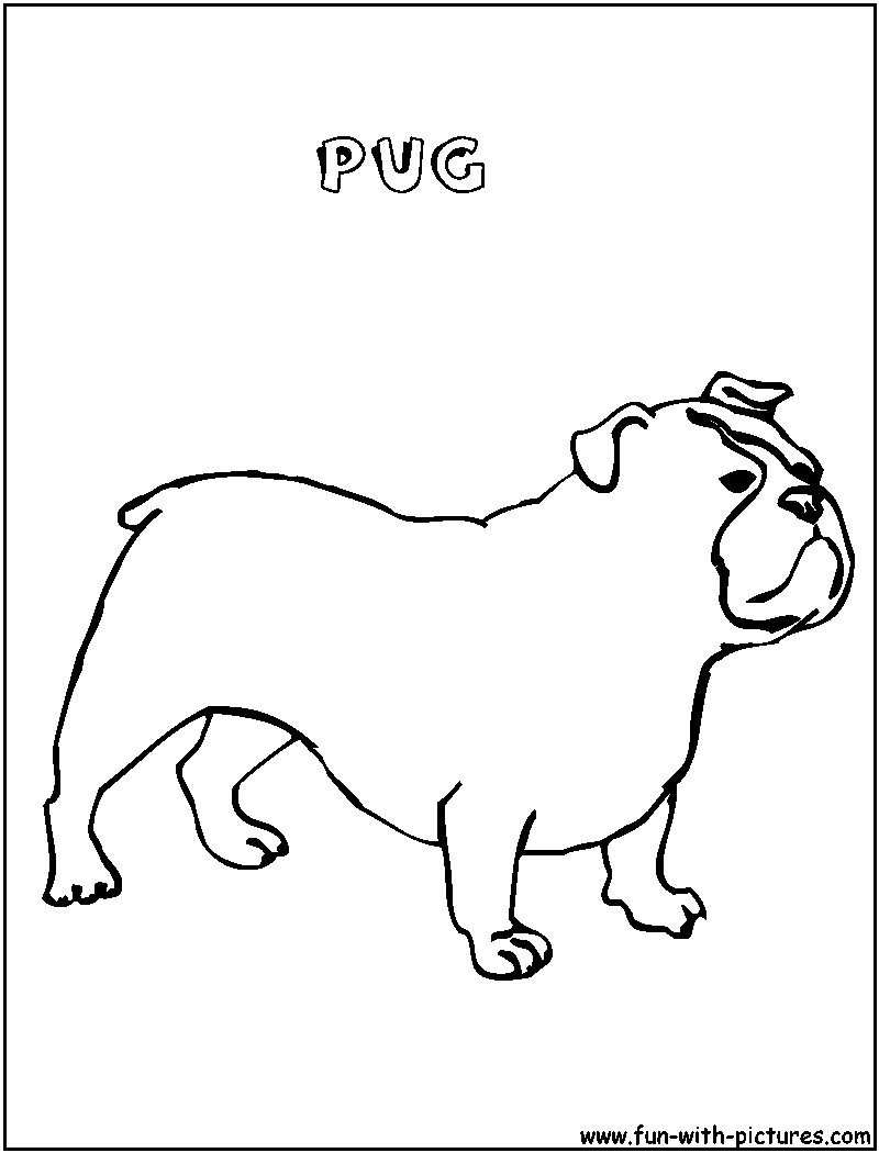 21 Free Pictures for: Pug Coloring Pages. Temoon.us